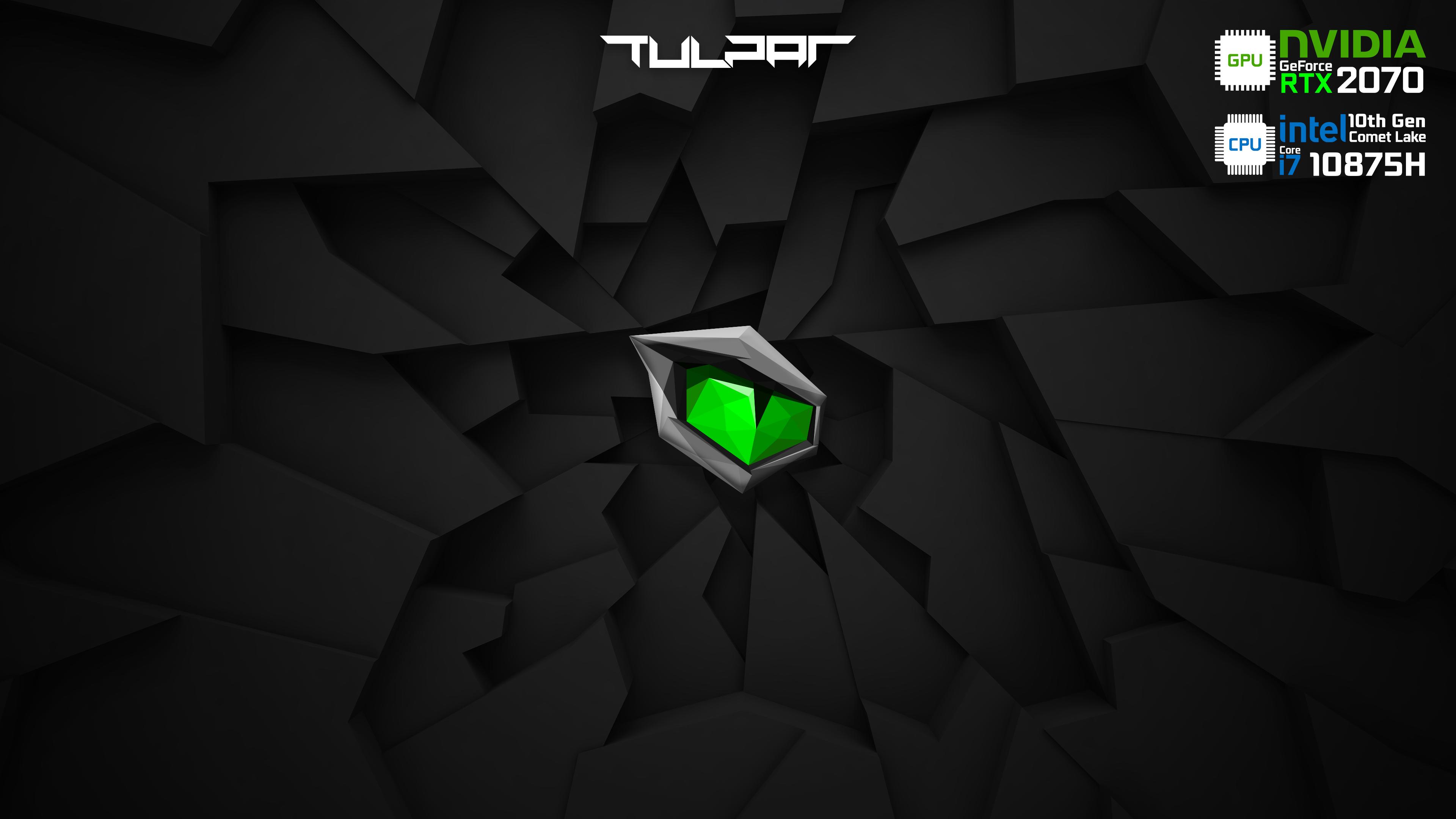 Monster - Tulpar - RTX2070 - 10875H