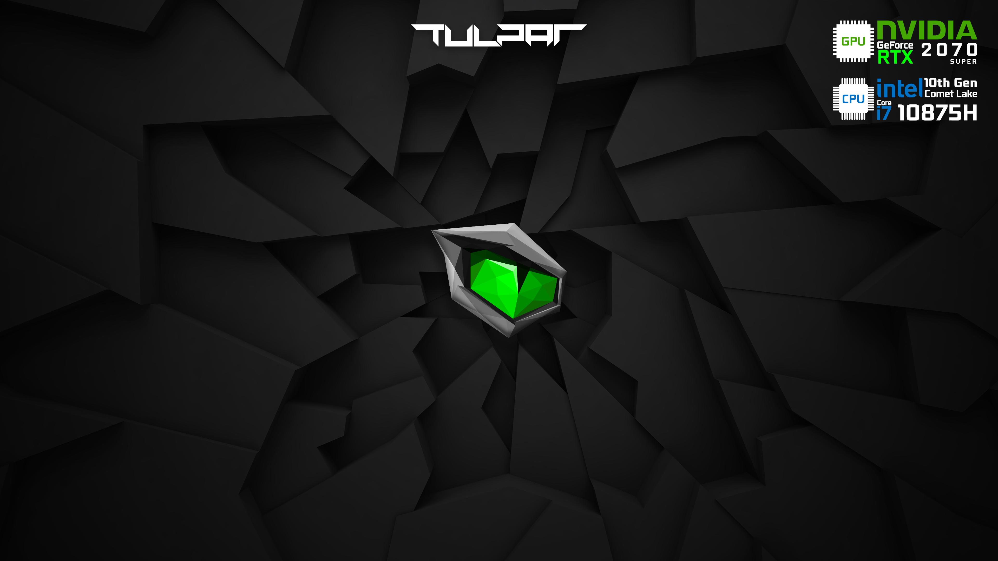 Monster - Tulpar - 2070SUPER - i7 - 10875H